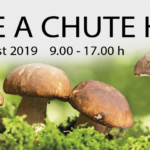 Banner k podujatiu Vôňe a chute húb 2019